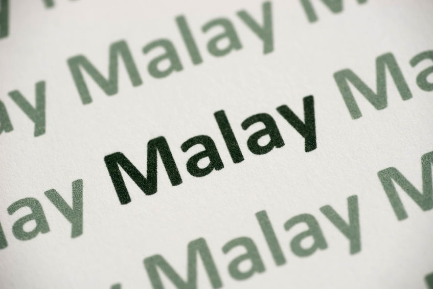 Technical Malay Translation Services